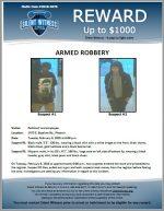 Armed Robbery / PetSmart 2475 E. Baseline Rd