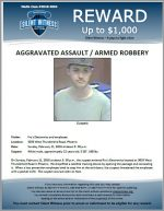 Armed Robbery / Agg. Assault – Fry's Electronics
