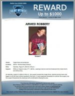 Armed Robbery / Target 4515 E. Thomas Rd.
