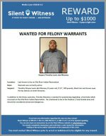 Timothy Lewis / Possibly in the Sacaton or Casa Grande Area.