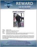 Armed Robbery / 19 year old male 9825 N. Metro Pkwy
