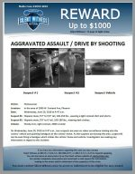 Aggravated Assault / Near 2800 W. Sunland Ave
