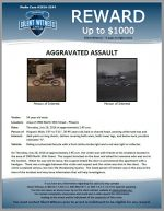 Aggravated Assault / 54 year old male