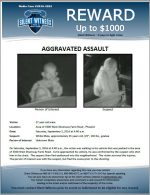 Aggravated Assault / 27 year old male