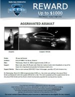 Aggravated Assault / 38 year old female