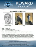 Aggravated Assault / 17 W. Monroe St