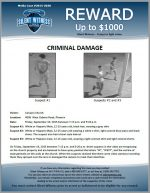 Felony Criminal Damage / 4006 West Osborn Road, Phoenix