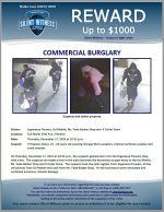 Commercial Burglary / 515 N 35th Ave, Phoenix