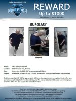 Burglary / Party City 2738 W. Peoria Ave