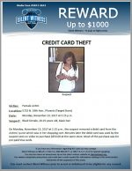 Credit Card Theft / 5715 N. 19th Ave., Phoenix (Target Store)