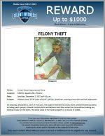Felony Theft / 1950 W. Baseline Rd., Phoenix
