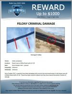 Felony Criminal Damage / Desert area on Miller Road north of I-10