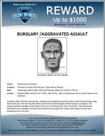 Burglary / Aggravated Assault / Area of Union Hills Drive and 13th Avenue
