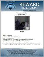 Burglary / 1300 W. Vineyard Rd