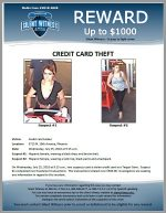 Credit Card Theft / 5715 N. 19th Avenue, Phoenix