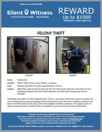 Felony Theft / 6700 N. Black Canyon Access, Phoenix