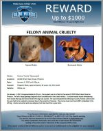 Animal Cruelty / 10200 West Hess Street, Phoenix