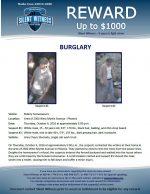 Burglary / 2300 W. Myrtle Ave., Phoenix