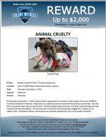 Animal Cruelty / Area of 13000 West Cottonwood Street, Surprise