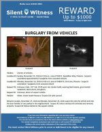 Burglary from Vehicles / North Phoenix