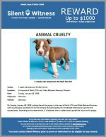 Animal Cruelty / Area of North 27th Ave and West Belmont Ave