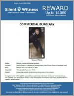 Commercial Burglaries / Central Phoenix, In the area of Seventh Avenue, from Thomas Road to Camelback Road