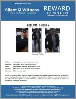 Felony Thefts / Multiple golf resort locations in Phoenix