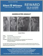 Aggravated Assault / In the area of 1 North 1st street, Phoenix