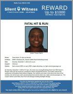 Fatal Hit and Run / Tanya Karim / 20th Street & Broadway Road