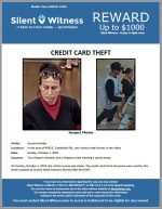 Credit Card Theft / In the area of 4300 E. Camelback Rd., and various retail stores in the valley