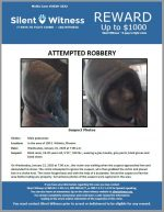 Attempted Robbery / 16 year old male / In the area of 100 E. Willetta, Phoenix