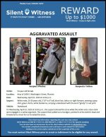 Aggravated Assault / Area of 1600 E. Washington Street, Phoenix