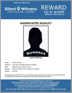 Aggravated Assault / 23 year old male / In the area of 1700 West Bell Road